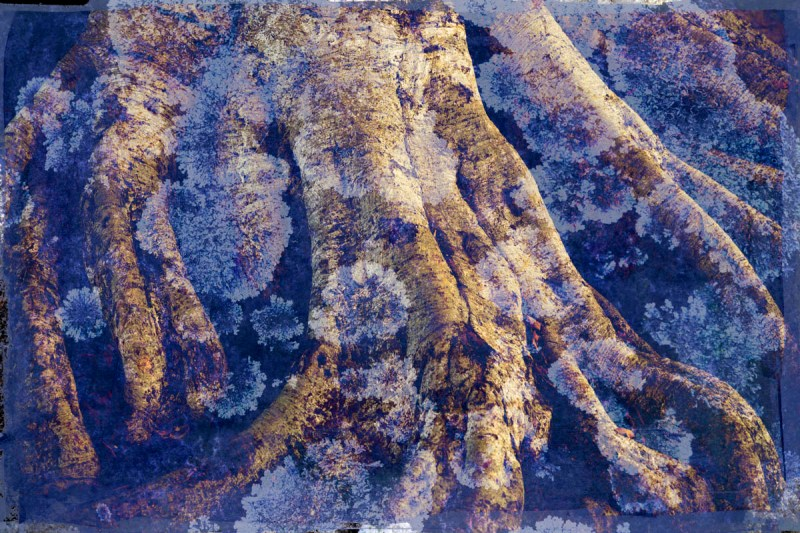 Digital collage, 6 layers © 2019 Liz Ruest
