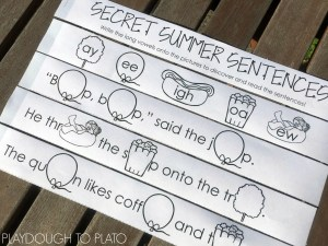 16 Secret Long Vowel Sentences