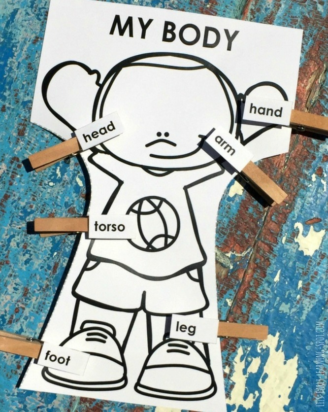 Practice matching body parts - pictures and words - with these free activities!
