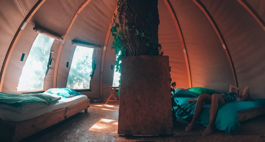Dormir dans une cabane dans les arbres