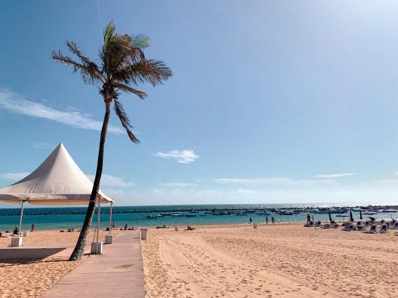 activités et choses à découvrir sur l'île de Tenerife - plage las Terecitas