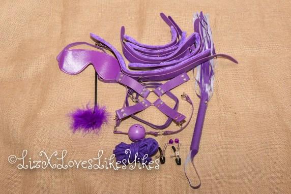 BDSM Set - Purple Copyright Liz BlackX  The entire set