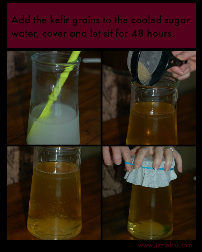 homemade water kefir soda image a