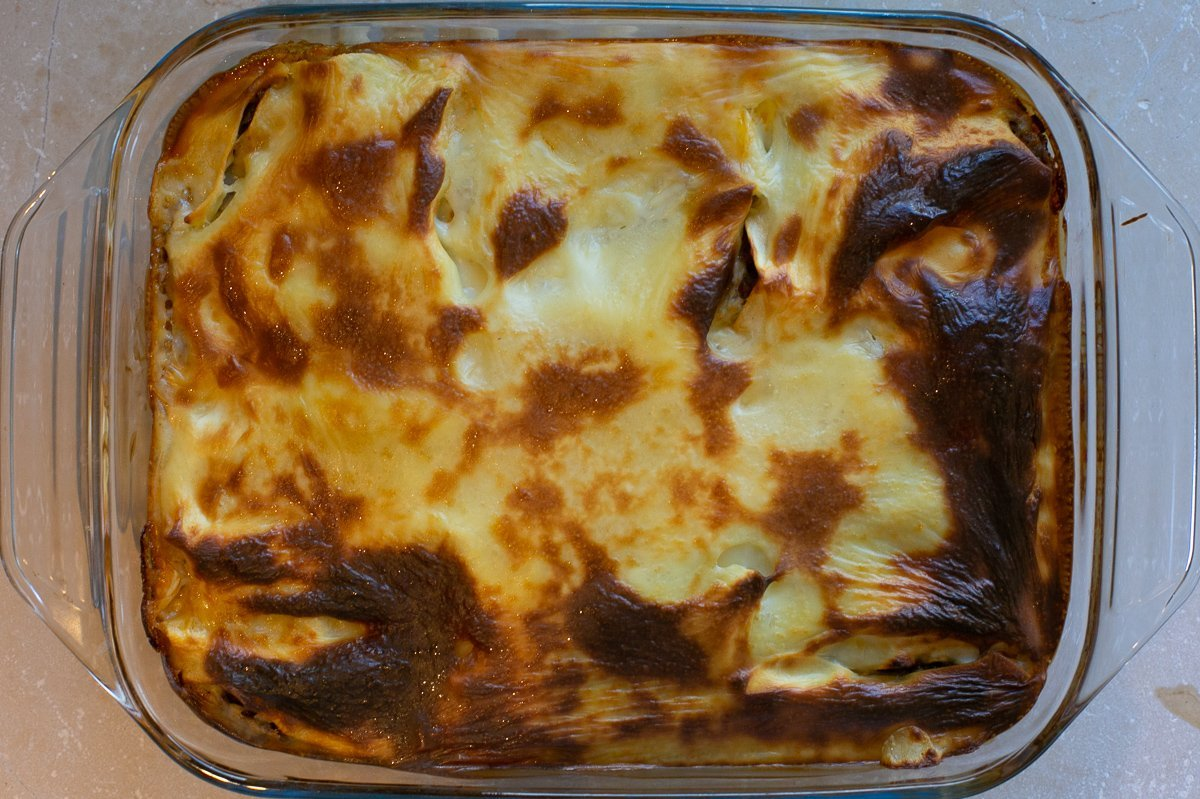 cooked homemade lasagne in a dish