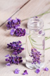 lavender blend - what is linalool