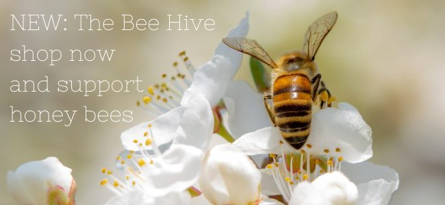 NEW The Bee Hive shop now and support honey bees