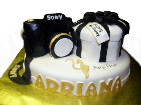 Baby Phat Gift and Camera Cake