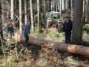 Maibaum Reinholden 26.03.2005 - 07