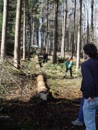 Maibaum Reinholden 26.03.2005 - 11