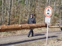 Maibaum Reinholden 26.03.2005 - 26
