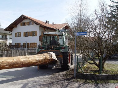 Maibaum Reinholden 26.03.2005 - 34