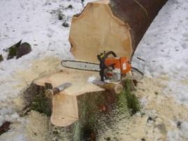 Maibaum Umschneiden 12.02.2005 - 13