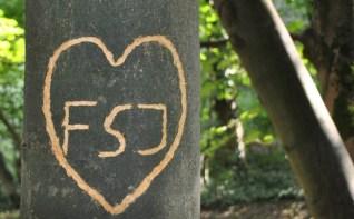 FSJ Kultur = Love