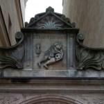 Institut für Deutsche Sprache und Kultur e.V. an der Martin-Luther-Universität Halle-Wittenberg (Lutherstadt Wittenberg) // FSJ Kultur // BFD Kultur und Bildung