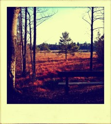 Seenland
