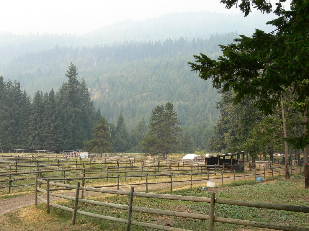 forest fires in British Columbia, emergency evacuation of livestock