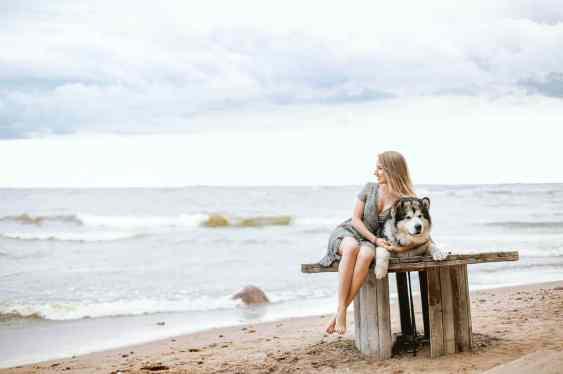 Mejor playa italiana para perros