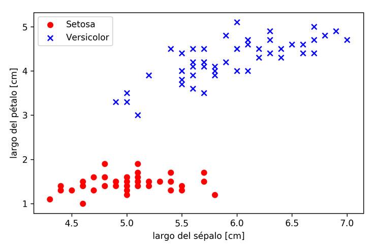 Grafico setosas y versicolor