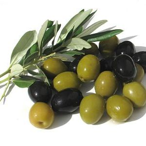 olivas lliria_opt