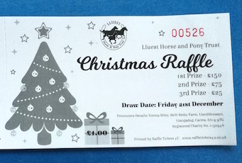 New Christmas Raffle Draw Date 1 Feb 2019