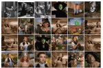 Quantitative approaches for evaluating the influence of films using the IMDB database