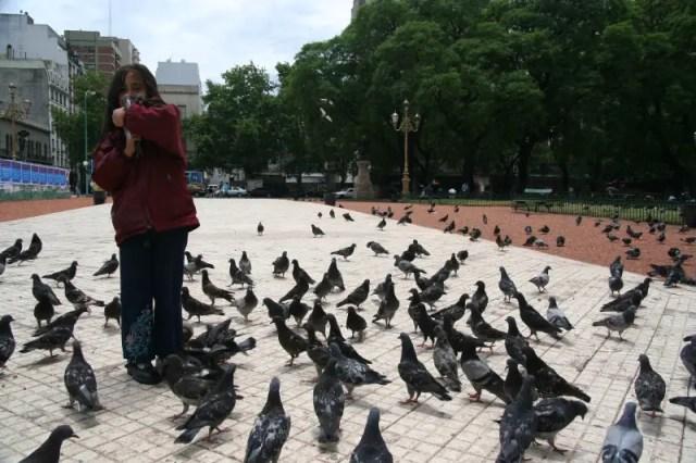 Gal & Pigeons