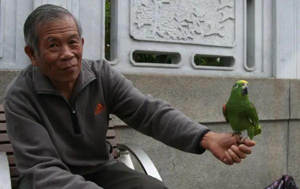 Man & Bird