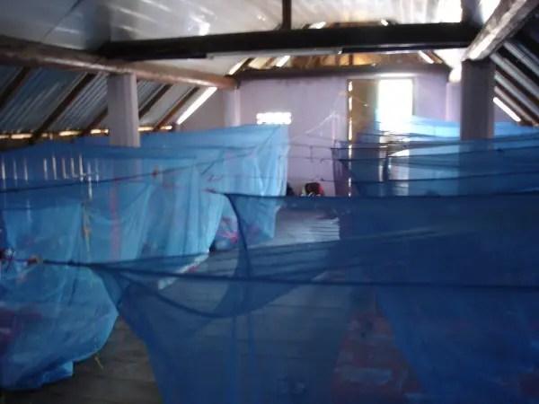 Mosquito Net City