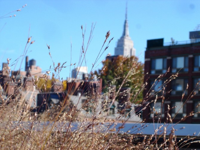 Empire State Building from the Highline