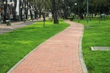 Bogota13
