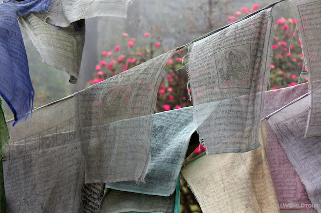 Prayer Flags and Rhododendrons