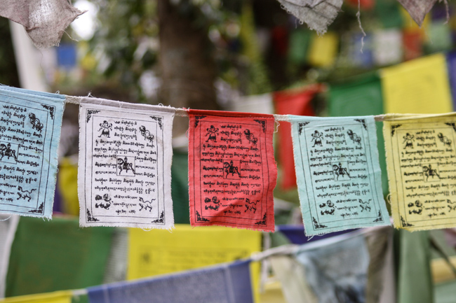 Prayer Flags in McLeod Ganj