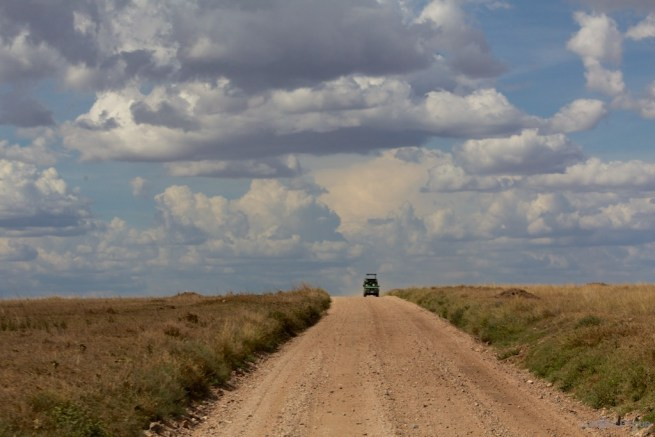 Into the Serengeti
