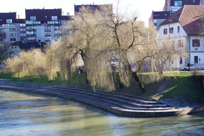 Riverbanks Ljubljana