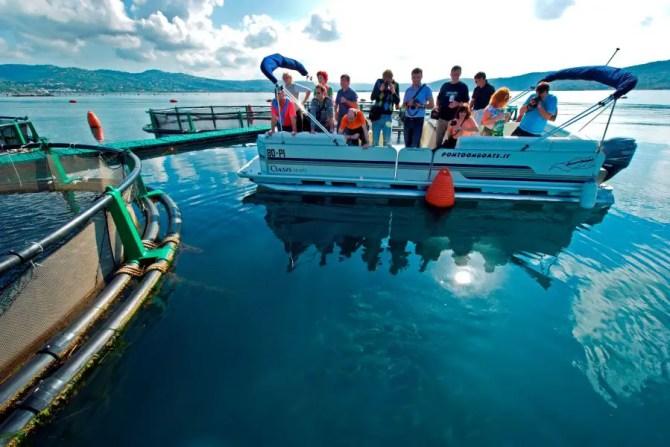 fonda-fish-farm-tour