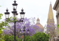 Video: What to do in Guadalajara