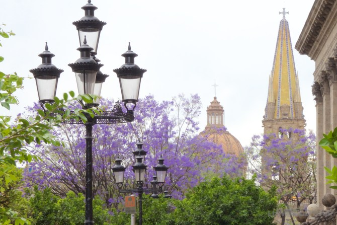 Guadalajara Downtown
