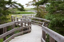 Boardwalk at PEI National Park