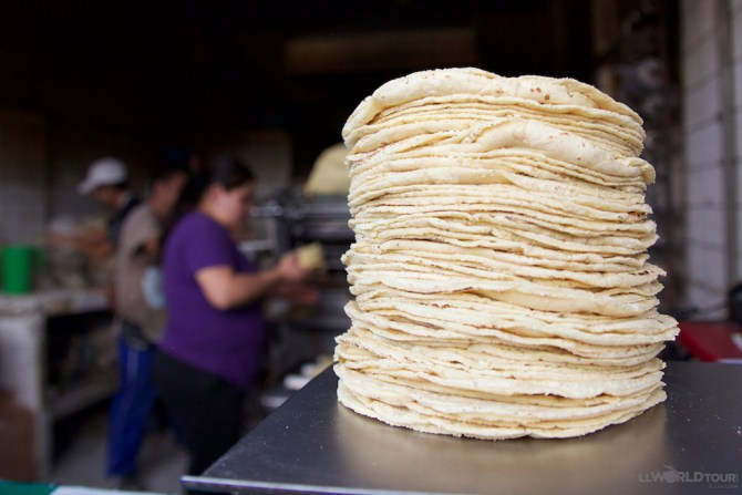 Mexico City Tortillas