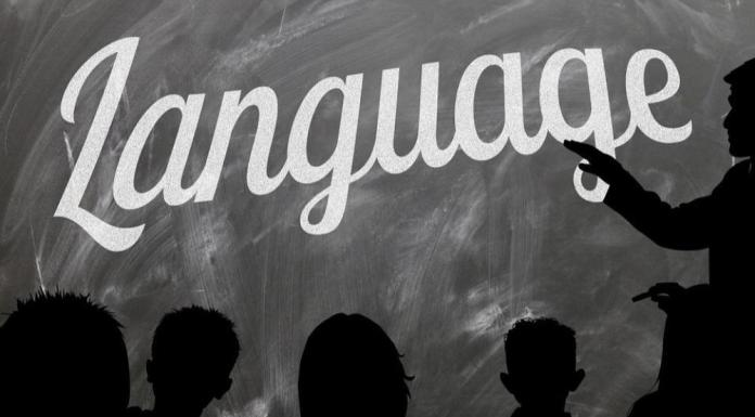 Let Moodle Into Your Native Culture By Contributing To Translations