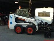 bobcat-753