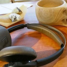 פלנטרוניקס סנס הדגמה איך מוזיקה משפיעה עלינו