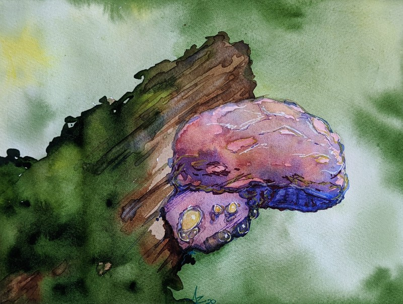 Watercolor Online Course | Shroomin | Part 1 | loadedbrushpdx.com