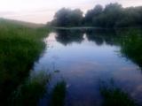 Dunav leva obala 19-05-2014