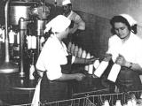 Kompanija Imlek osnovana je davne 1953