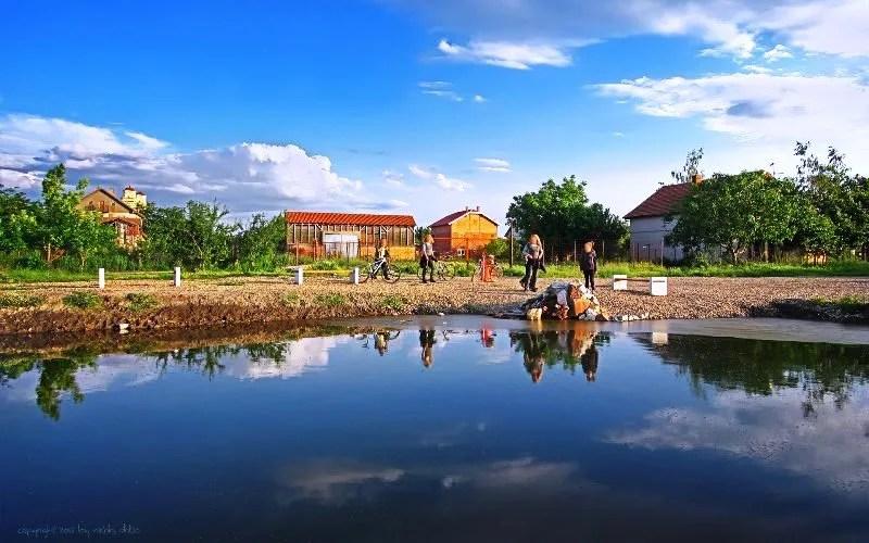 Galerija   Voda bogatstvo leve obale Beograda - 2013