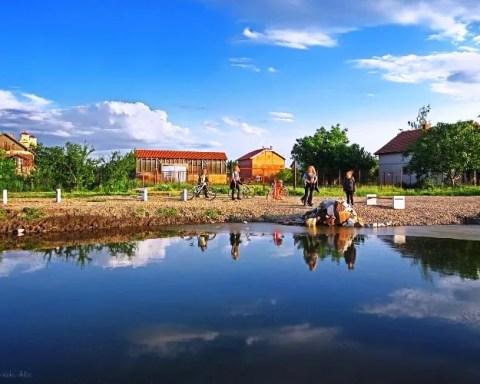 Galerija | Voda bogatstvo leve obale Beograda - 2013