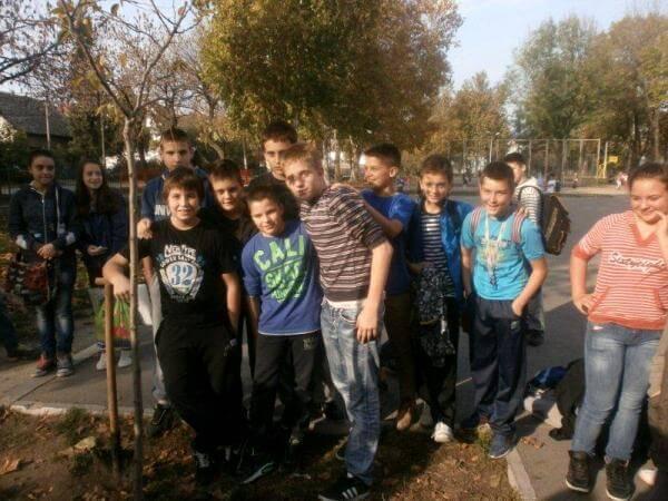 """Akcija """"Drvo generacije"""" u osnovnoj školi Stevan Sremac u Borči - 6 i 7 razred"""