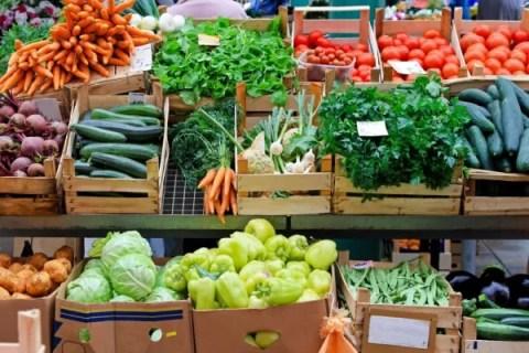 Besplatna obuka proizvođačima organskog povrća - 2015