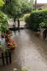 poplava borca 1 2019 06 24